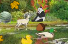 Cute Animals Hidden Game