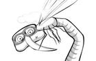 Muỗi (mosquito)