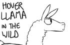 Hover Llama In The Wild