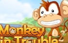 Monkey in Trouble