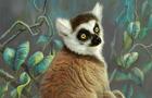 [QZ] - Galactic Lemurs