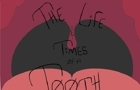 Life and Times of a Tooth