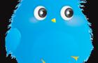 Furry Bird