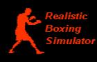 Realistic Boxing Simulato