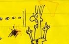 Spider Squash