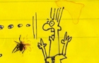 Spider Squash Frantic