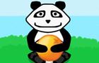 Panda Wanna Orange