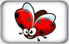 Beetle Bob