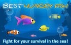 Best Hungry Fish