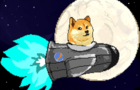Doge: To the moon