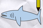 Lets Draw A Shark - DWC