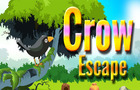 XG Crow Escape