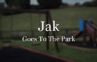 Jak Goes To The Park
