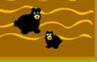 bear evolution
