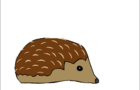 Porcupines And Cancer Wards