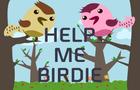Help Me Birdie