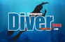 Courageous Diver