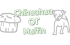 Chihuahua or Muffin?