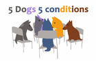 5 Dogs 5 Conditions