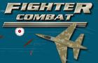 Fighter Combat