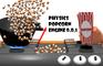 Physics Popcorn Engine 0.0.1