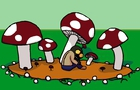 Cordyceps Shrooms
