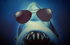 Shark Cops