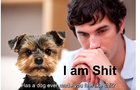 National Dog Day ?