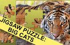 Jigsaw Puzzle: Big Cats