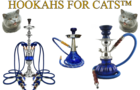 Hookahs For Cats