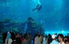 Man Arrested Mating With Fish At Aquarium