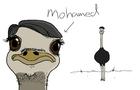 Mohammed Ostrich