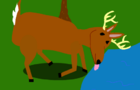 Incident Of The Deer
