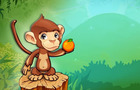 Fruit Monkey Fun