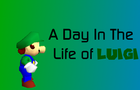 SM64 Bloopers: A Day in the Life of Luigi -- Part One