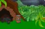 Nature Escape Jungle