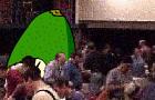 Where's Avo?