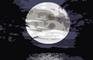Star Syndicate Halloween