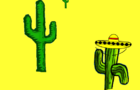A day with a cactus part2