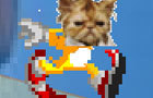 KITTY SPEED BOY