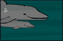 Dolphins Will Die