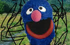 Pube Grover Chronicles