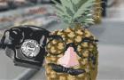 Fruit Flavored Fun