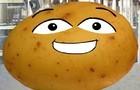Sid the Talking Potato