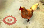 The Chicken Race