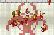 Infectonator : Christmas
