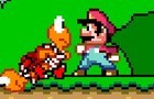 Mario:Wrong Way
