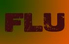 Swine Flu - The game