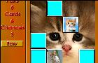Fuzzy Memory: Kittens