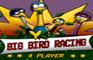 Big Bird Racing